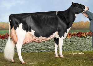 Blondin Goldwyn Subliminal EX-96