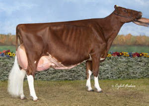 KHW Regiment Apple Red EX-96