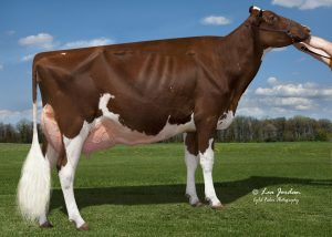 Miss Hot Mama Red EX-92