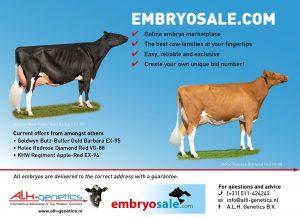 EMBRYOSALE.COM