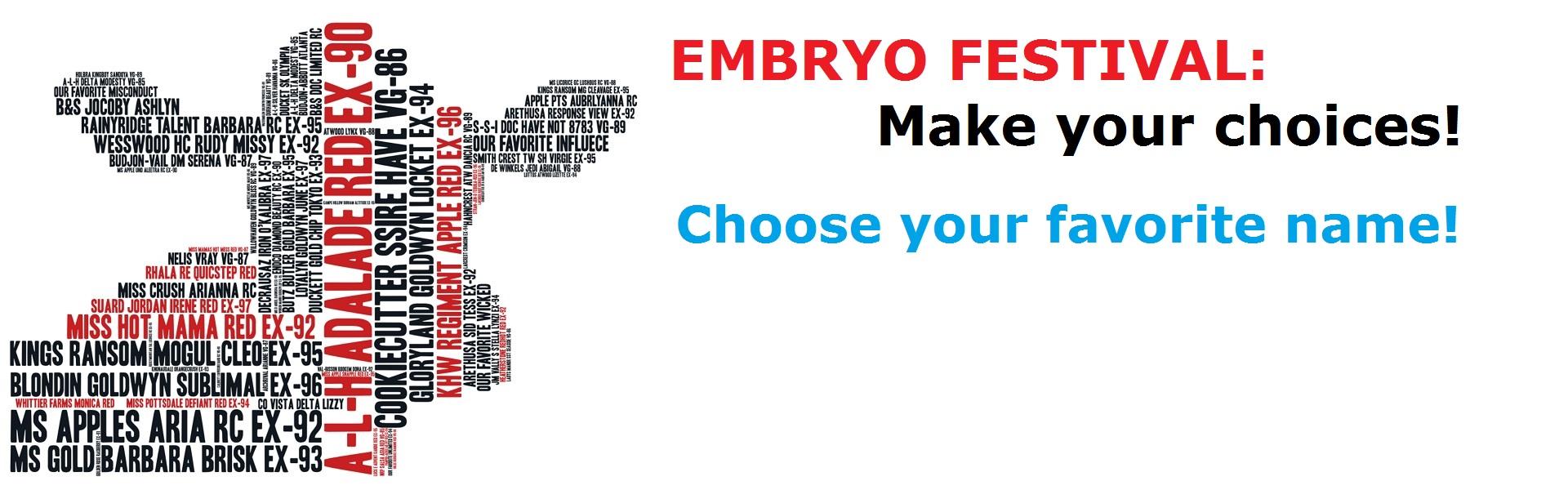Embryo Festival