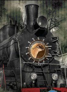 De Woodmohr Godiva trein!