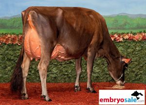 Jersey fans pay attention: Chrome FEMbryos out of Dixie!