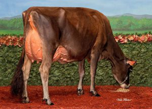 Crossbrook HG Dixie EX-94