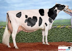 Walnutlawn McCutchen Summer EX-94
