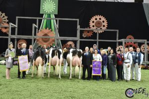 De Unix uit Intermediate Reserve Champion Royal Winter Fair 2019
